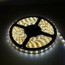 10xLED Strip SMD3528 60LEDS /M Wormwhite Color Waterproof 5 meter with high quality chips