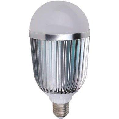 10x30W LED Globe Bulbs Energy-Saving With Bridgelux LED CHIP (USA) For Indoor Lighting