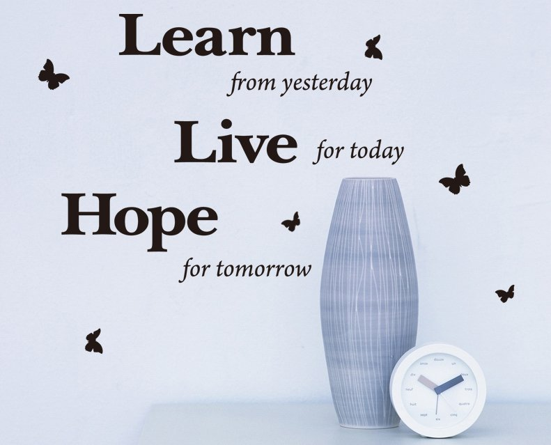 'Learn, Live, Hope' Wall Art Quotes Vinyl Sticker