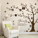 Large Family Photo Tree & Birds Art Vinyl Wall Sticker, DIY Wall Decal