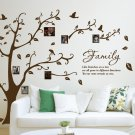 [X Large] Family Photo Tree & Birds Art Vinyl Wall Sticker, DIY Wall Decal