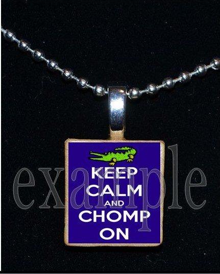 KEEP CALM AND GO GATORS Blue & Orange Team Mascot Pendant Necklace or Keychain