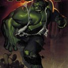 Indestructible Hulk #5B (May 2013, Marvel) VARIANT