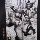 Wolverine 53B (Jun 2007, Marvel)