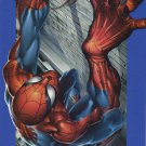ULTIMATE SPIDER-MAN #8B