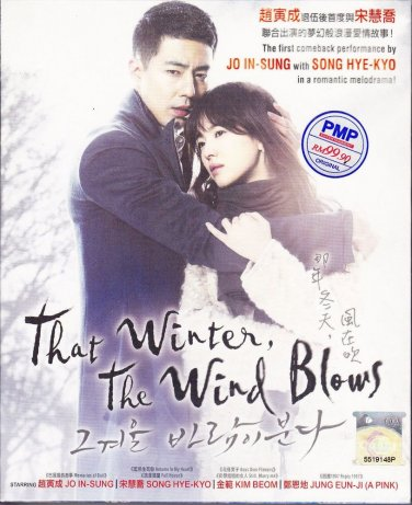THAT WINTER THE WIND BLOWS Jo In-sung Song Hye-kyo KOREA DRAMA DVD English Sub