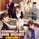 DVD Cinderella And Four Knights Korean TV Drama Series Ahn Jae-hyun English Sub