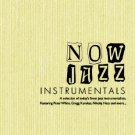Now Jazz Instrumentals - featuring Peter White, Gregg Karukas, Nikolaj Hess (2CD)