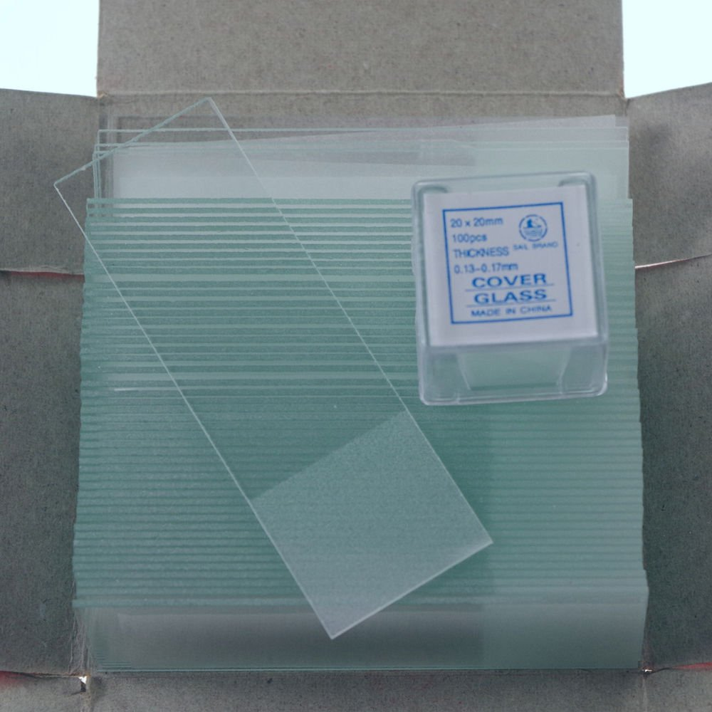 microscope slides 50pcs frosted &200pcs 20x20  cover glass slips