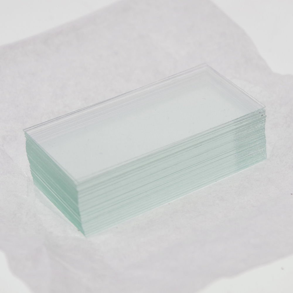 100pcs microscope cover glass slips 24mmx50mm