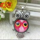 Owl in Pink
