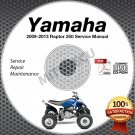 2009-2013 Yamaha RAPTOR 250 YFM25 Service Manual CD ROM repair shop 2010 2011 12