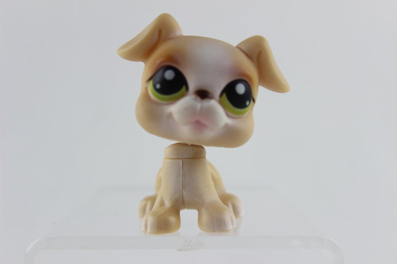 Littlest Pet Shop Magic Motion #235 Tan & White Boxer Dog Puppy Green Eyes LPS