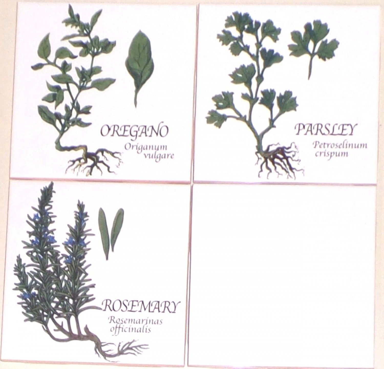 "Green Herb Ceramic Tile 3 of 4.25"" Oregano Rosemary Parsley Kiln Fired Decor"