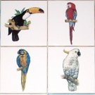 "Cockatoo Parrot Macaw Toucan Bird Ceramic Tile Mural 4pcs of 4.25"" Kiln Fired"