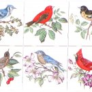 "Song Birds Set of 6 Ceramic Tile 4.25"" Kiln Fired Back Splash Blue Bird Cardinal"