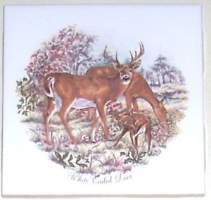 "Closeout White Tail Deer Family or Herd Ceramic Tile 4.25"" Kiln Fired Decor"
