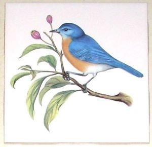 "Blue Bird Ceramic Tile 4.25"" Song Bird Collection Kiln Fired Decor Back Splash"