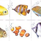 "Fish Ceramic Tile set of 6 of 4.25"" x 4.25"" Kiln fired Back Splash Tile Decor"
