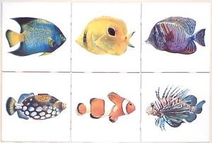 "Tropical Fish Ceramic Tile 6 of 4.25"" x 4.25"" Kiln fired Back Splash Tile Decor"
