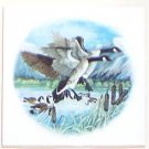 "CLOSEOUT Canadian Geese Ceramic Tile Wild Bird  Kiln Fired Accent 4.25""* Decor"