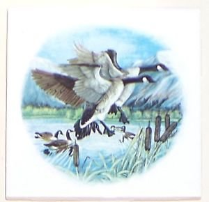 """CLOSEOUT Canadian Geese Ceramic Tile Wild Bird  Kiln Fired Accent 4.25""""* Decor"""