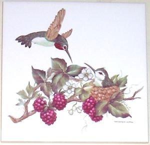 "HUMMINGBIRD WITH BERRIES  CERAMIC TILE 6"" X 6"" KILN FIRED DECOR"