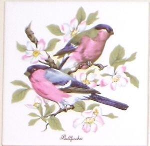 "Bullfinch Ceramic Tile Finch Song Bird 4.25"" Kiln Fired Decor Back Splash"