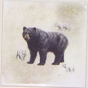 "Bear Ceramic Tile 6.00"" x 6.00"" Kiln Fired Wild Life Decor"