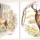 "Deer Ceramic Tile Kiln Fired Back Splash Decor 6""x 6"" Biscuit Color Tile"