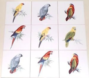 "Tropcial Bird Parrot  Ceramic Tile Back Splash 6"" Set of 9 Kiln Fired DECOR"