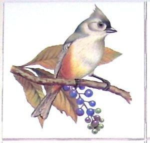 "Titmouse Song Bird 4.25"" x 4.25"" Accent Ceramic Tile Kiln Fired Decor"
