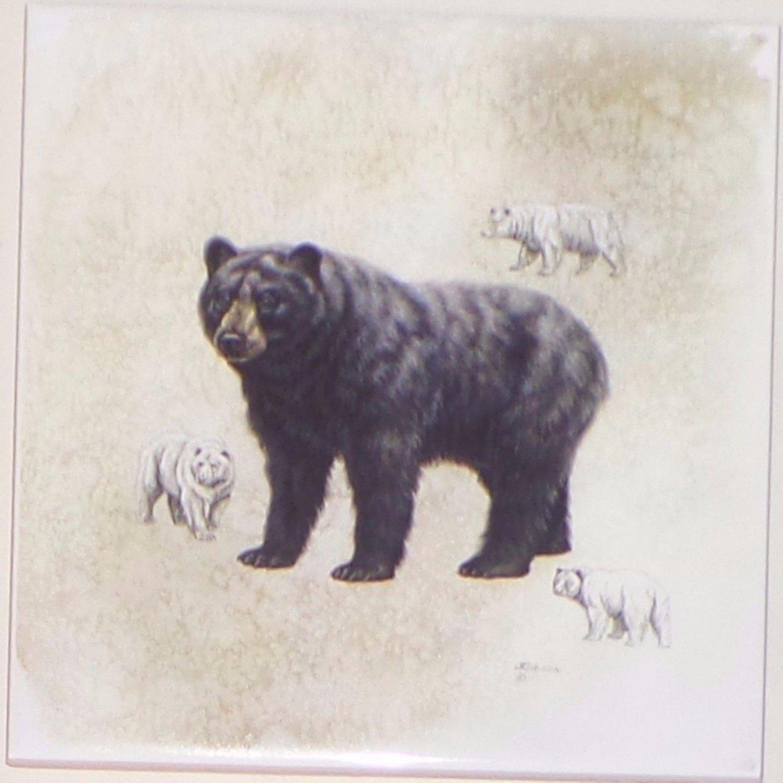 "Bear Ceramic Tile 4.25"" x 4.25"" Kiln Fired Wild Life Decor"