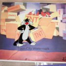 Warner Bros Sylvester the Cat hand painted cel  10x13 inches   TNT background