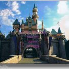 Disneyland Sleeping Beauty Castle NEW  8 x 10 Professional