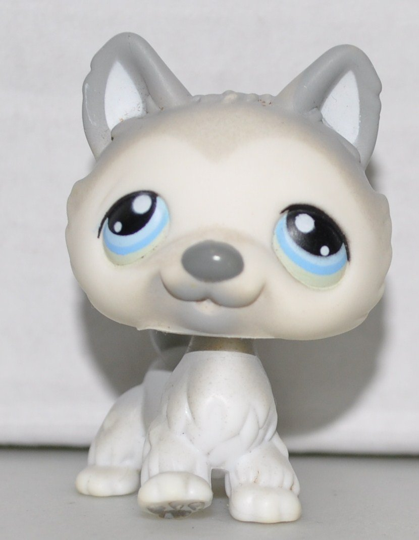 Husky #69 Littlest Pet Shop Collector Toy LPS Collectible Replacement Figure Loose
