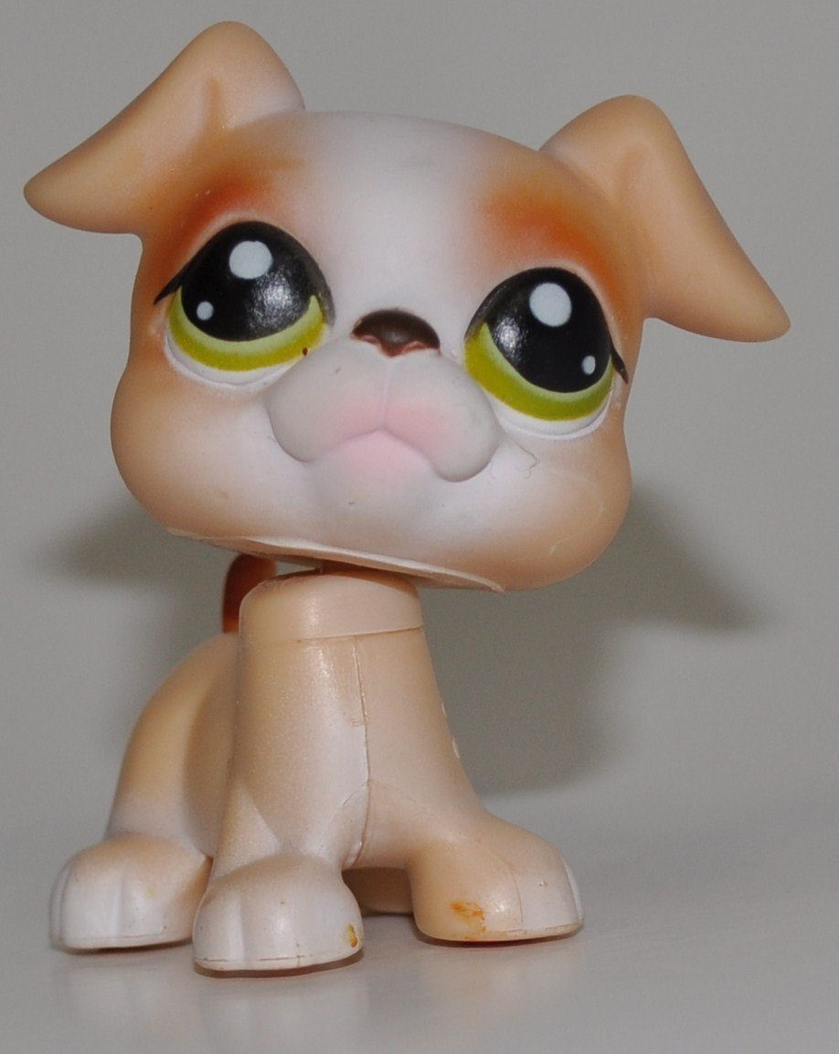 Boxer #235 Littlest Pet Shop (Retired) Collector Toy LPS Collectible Replacement  Figure Loose