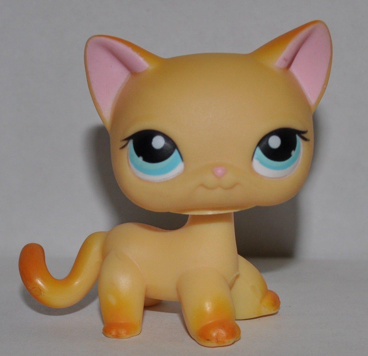 Littlest Pet Shop #339 Raceabout Ranch Cat Brooke Lps hasbro