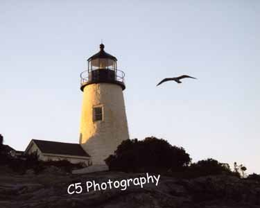 Pemaquid Lighthouse (pemaquid 003) - 8 x 10 Matted Photograph