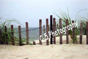 Beach Dune Fence (Beach 005) - 8 x 10 Matted Photograph