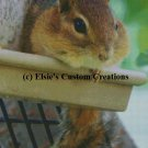 Chipmunk 1 - PDF Cross Stitch Pattern