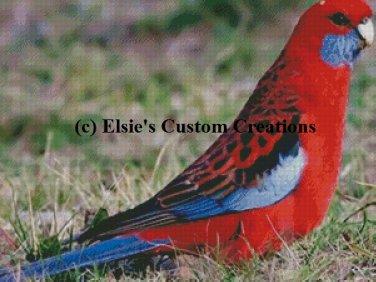 Parrot 1 - PDF Cross Stitch Pattern