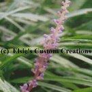 Flower 1 - PDF Cross Stitch Pattern