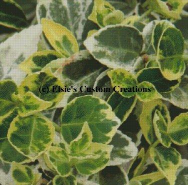 Decorative Greenery - PDF Cross Stitch Pattern