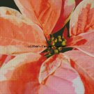 Poinsettia Flowers 4 - PDF Cross Stitch Pattern