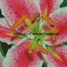 Star Gazer Lilly 1 - PDF Cross Stitch Pattern