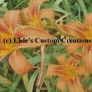 Tiger Lilly's 5 - PDF Cross Stitch Pattern