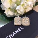 Earrings 046