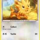 Pokemon Black & White Common Card Lillipup 81/114