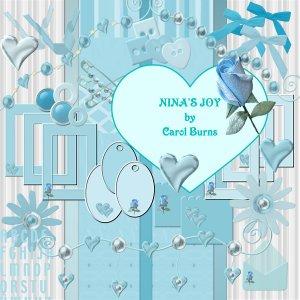 NINA'S JOY